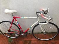 1989 Apollo Equipe Road Bike - retro! Brand new tyres and break pads.