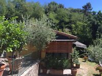 Holidays Cottage in Tuscany (Italy)
