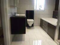 Professional handymen, bathrooom installation,plastering, carpentry