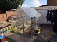 6ft x 8ft poly carbonate greenhouse with accessories
