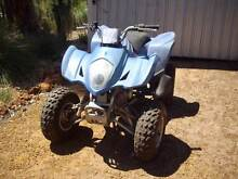2006 Loncin 300cc - Does not start Bullsbrook Swan Area Preview
