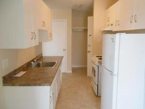 2 Bedroom -  - Montrose Apartments - Apartment for Rent Edmonton Edmonton Edmonton Area image 4