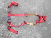 Sabelt harness