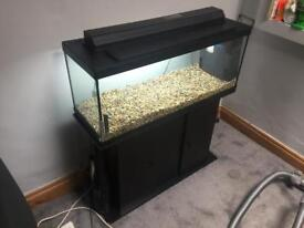 Beautiful Large fish tank with pebbles, light, filter and storage