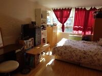 Sunny and spacious double room in a friendly flat share