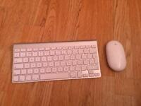 Apple official keyboard & mouse ( wireless )