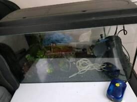 Fish tank and full set up