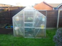 Greenhouse aprox 6 feet x 4 feet fitted with plastic panels instead of glass for safety