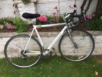 Specialized Allez road bike medium frame 54