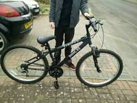 X-rated dirt jump bike