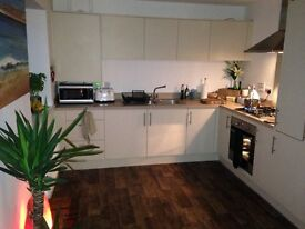 Mon/Fri Let Double Room in Beautiful Flat with Own Bathroom Parking & Bike Store £460 PCM