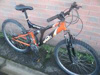 Raleigh Basic Mountain Bike