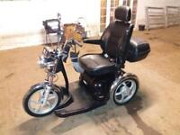Beautifu mobility 3 wheel trike sport rider for sale