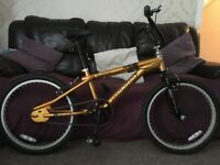 MAGNA FURIOUS BMX BIKE GOLD/BLACK