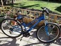 Older girls, small ladies Apollo XC26 bike