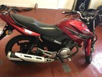 Honley /Yamaha YBR 125 2013 Bargain no offers