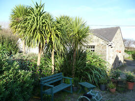 Cottage in Cornwall only 5 minutes walk to the beach, pets welcome