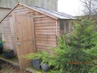 Large Shed for sale 14x10