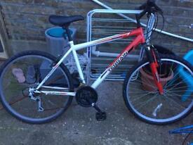 Cheap Nevis Terrain Bike