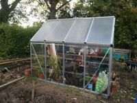 Free 8x6 Greenhouse