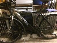 Hawk bicycle