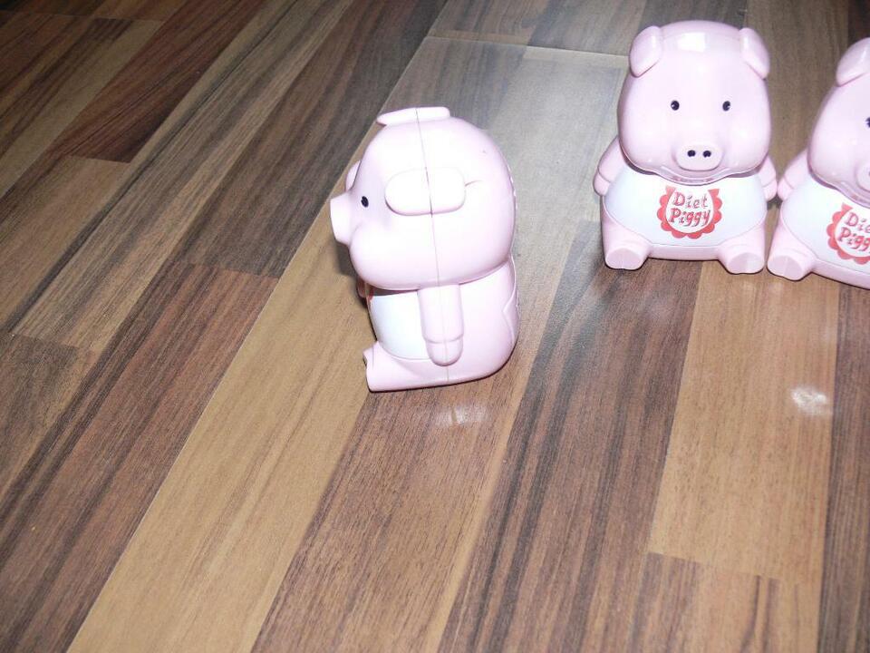 Diät Schweinchen Diäthilfe für Kühlschrank, gebraucht in Gelsenkirchen