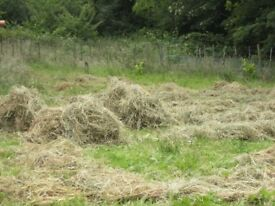 i have hay for sale.this years .dry and in good condition.hay is loose.can be put in bags ..........