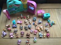 Littlest pet shop.