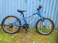 Specialised hot rod mountain bike