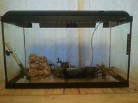 Fish/Reptile Tank.