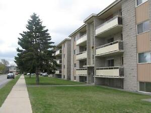 HWY 8 and Fergus Street – Beautiful 1 Bed Apartment! Kitchener / Waterloo Kitchener Area image 2