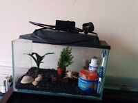 Fish tank - complete set - ready to go