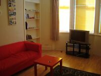 GREAT PRICE!!! Bright 1 Bedroom Furnished Flat