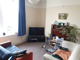 Room to Rent - Redland - £350 /month
