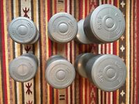 Dumbbell weights (Argos Opti 15.8kg Vinyl Dumbbell)