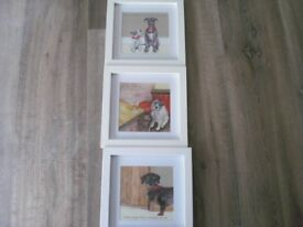 Set of three dog pictures