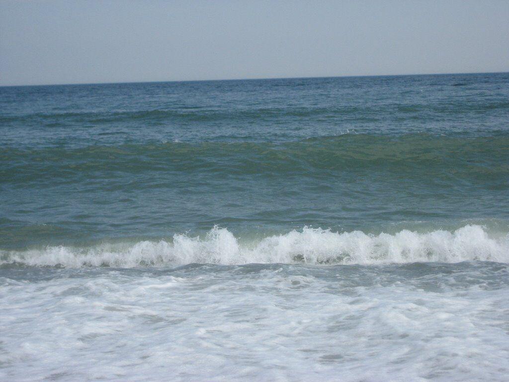 Beach Bound Widow