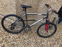 Large Giant Rock mountain bike