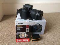 Canon EOS 70D & 18-135mm IS STM Lens