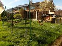 Fencing suitable for poultry and small animals