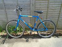 "Raleigh Marauder bike Wheel size 26"""