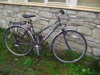 Marin ladies cycle