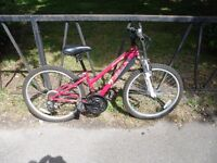 Small Ladies Front Suspension Mountain Bike For Sale. Fully Serviced Ready To Ride Guaranteed