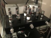 Bewitched EL34 Valve / tube Amplifier Fully Upgraded Valves