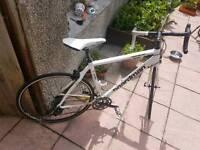 Bordaman Bike