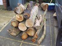 logs/wood for wood burner chimenea fire pit/fire/open fire