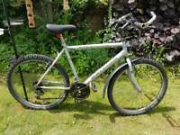 "Gents Raleigh 20"" frame mountain bike."