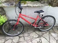 "Raleigh bike for sale. In need of TLC. 15"" frame"