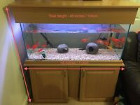 ** FISH TANK FOR SALE - CUSTOM MEASUREMENT **