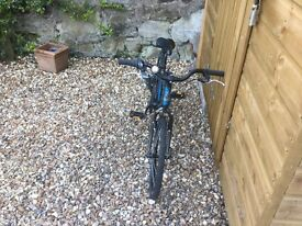 Kids 20'Raleigh bike. Great condition.